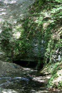 Source of the Coquille