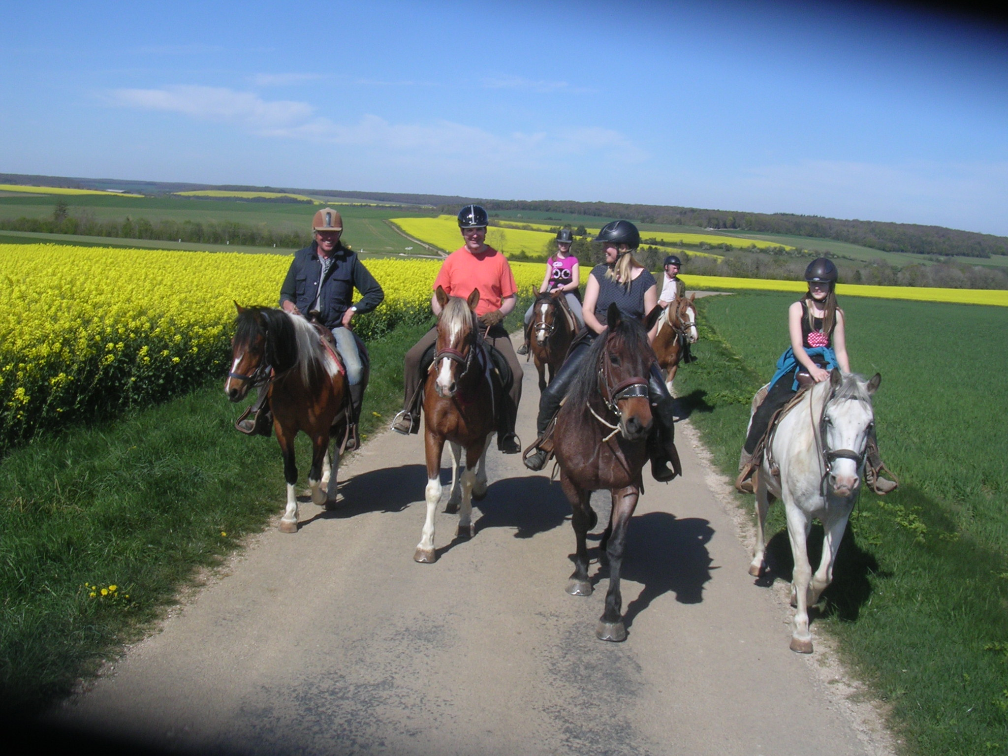 Horse back riding in France